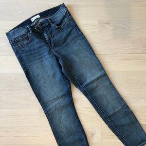 GAP 29R True Skinny Blue Jeans